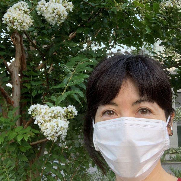 夏の黄昏と蝉の声。小島慶子