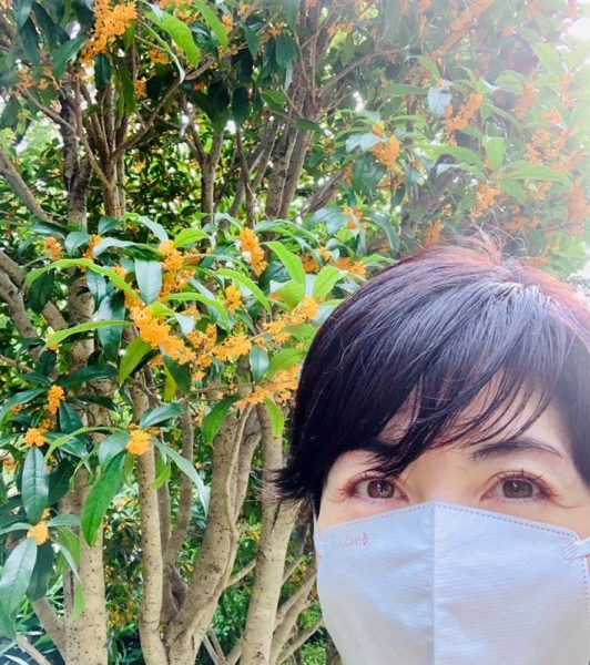 手をつなぎたくなる季節です 小島慶子