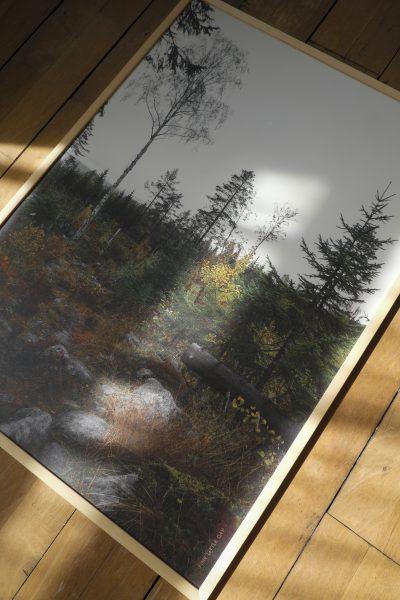 Fine Little Day (ファインリトルデイ)/NORRLAND 50 x 70 cm/¥5,500